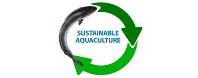b2ap3_thumbnail_1007_niri-sustainable-aquaculture-628x250.jpg